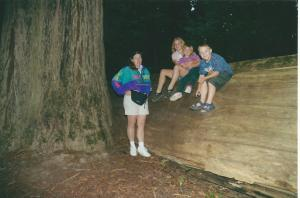 Redwood4